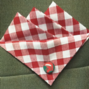Red Gingham Pocket Hankie with Red Trojan Head Green Pin